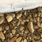 Weep Holes encumbered by stones -pest infestation risk