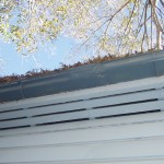 Building & Pest Inspection Gold Coast. Gutters rusty and filled with leaf matter