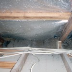 Pest Inspection Gold Coast. Termite nest discovered in roof void