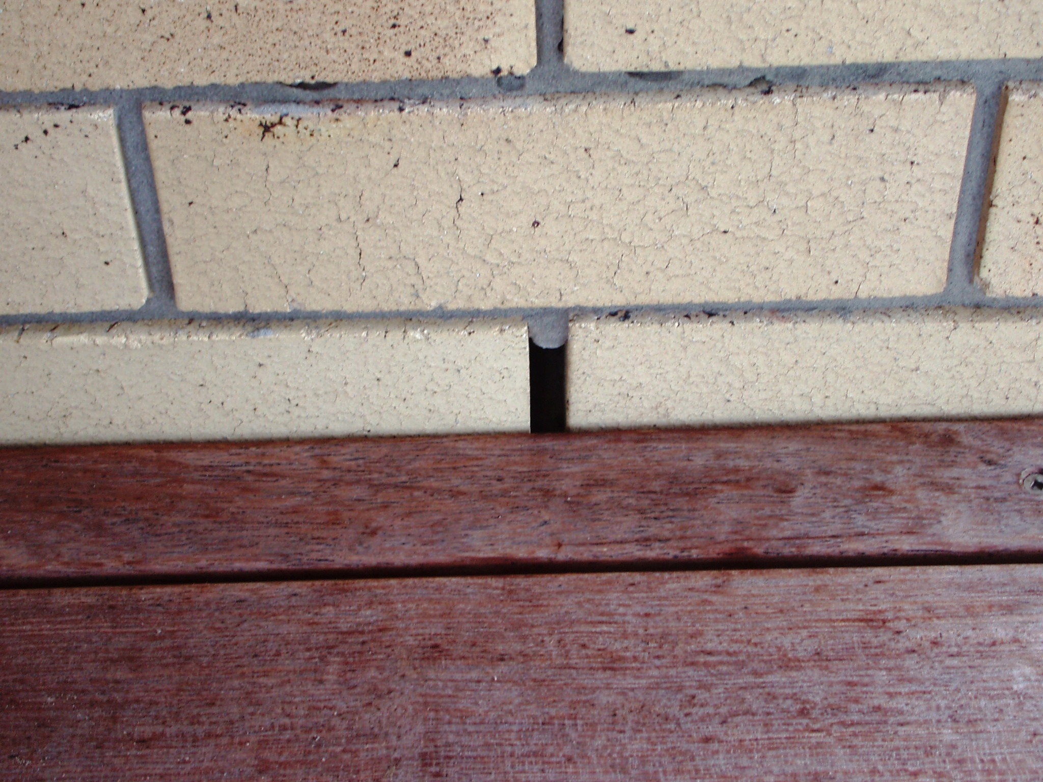 Gallery For Building Amp Pest Inspections Gold Coast