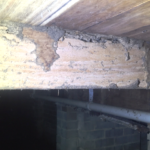 Building and Pest Inspection Gold Coast - Termite mudding