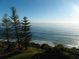 Burleigh building and pest inspections - Gold Coast